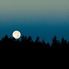 Full Moon Rising I by Joel Meaders
