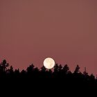 Full Moon Rising II by Joel Meaders