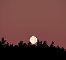 Full Moon Rising II by Joel Meaders