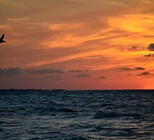 Caribbean Sunset by Roxanne Persson