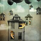 Birdhouse 2 by Catrin Welz-Stein