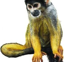 Squirrel monkey by Mieke Roth