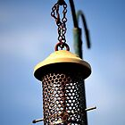 Vintage bird feeder by wittieb