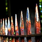 Vibrant old iron railings by wittieb
