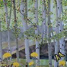 Springtime Aspens by Constance Widen