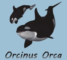 Orca Mother and Calf by Qutone
