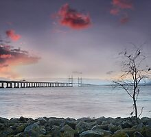 Severn Crossing 06 - Severn Beach by Paul Croxford
