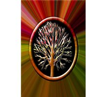 ✌☮ TREE BLEEDING INSIDE CRYING OUT TAKE CARE OF OUR TREES & MOTHER EARTH✌☮  Photographic Print