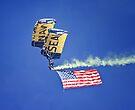 U.S. Navy Parachute Team, the Leap Frogs by Alex Preiss