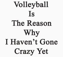 Volleyball Is The Reason Why I Haven't Gone Crazy Yet by supernova23