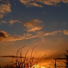 Sunset After Snow by Vicki Spindler (VHS Photography)