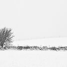 Minimalist Winter Landscape by PigleT