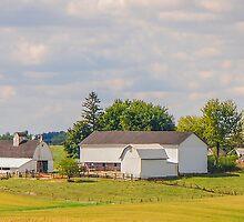 Amish Farm by mcstory