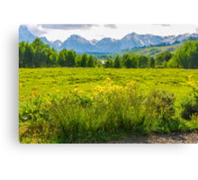 View Of The Grand Tetons Canvas Print