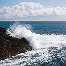 Surf's Up! by Timothy L. Gernert