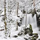 snow in the falls by dc witmer