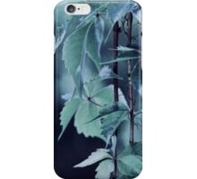 Indigo Evening iPhone Case/Skin