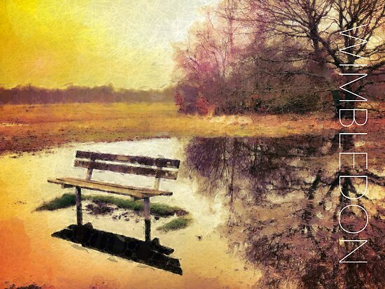 Wimbledon Common I, London by Ludwig Wagner