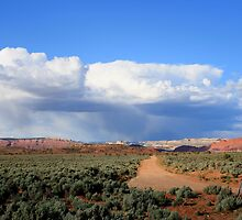 Kodachrome State Park,along the dirt road,Utah by Anthony & Nancy  Leake