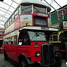 AEC Regent 1 Bus by mike  jordan.