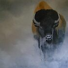 Bison in the mist by andy davis