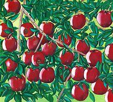Apples by Barbara  Strand