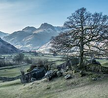 Langdale by The Walker Touch