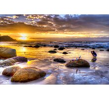 Watego's Sunset with Seagulls and Girl Photographic Print