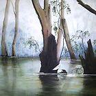 Pelican Swamp by Diko