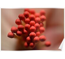 A Bouquet of Matchsticks Poster