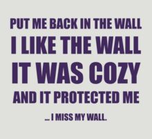 I Miss My Wall by McArtistic