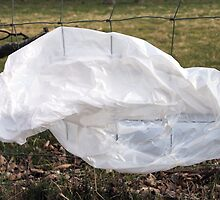 Plastic Bag Resting On Wire Fence by Jazzdenski