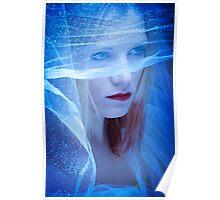Winter Bride Poster