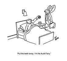 Audit Fairy Cartoon Photographic Print