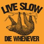 Live Slow Die Whenever by protos