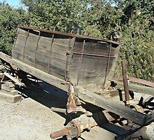 """Water Wagon"" 1908 - 1930 by Gail Jones"