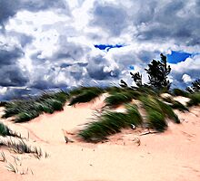 Sandy Beach Dune Grass by Phil Perkins