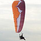 Paraglider by Steve Green