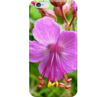 Sticky Geranium (available in ipod, iphone, & ipad cases) iPhone Case/Skin