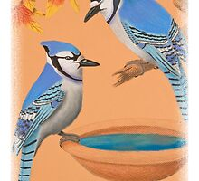 Blue Jays with Bird Bath by jkartlife
