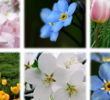 Spring Flowers Montage 1 Sticker