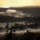 Golden Sky.. by debsphotos