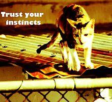 Trust your instincts w/ qoute by Louis Delos Angeles