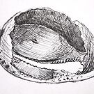 Sketches - Sea Shell by CourtneyAnne82