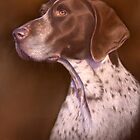 """MACH"" German shorthaired pointer by Peter Skillen"