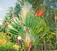 Seychelles splendour by terezadelpilar~ art & architecture