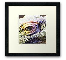 Dragons eye Framed Print