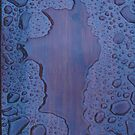 Rainwater on Wood by himmstudios
