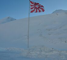 Swiss Flag in Juf by itchingink
