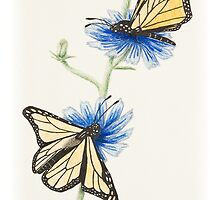 Butterflies with flowers by jkartlife